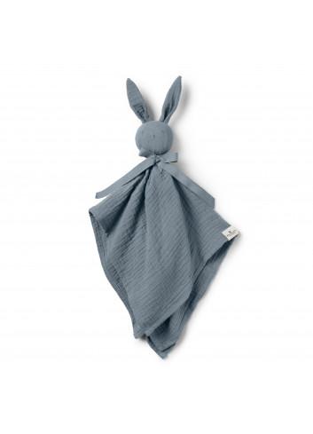 Cuddle Cloth Blinkie - Blue