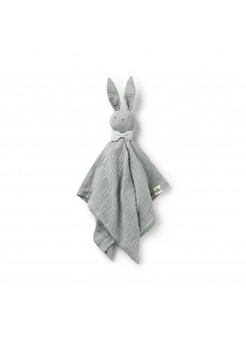 Cuddle Cloth Blinkie - Bo
